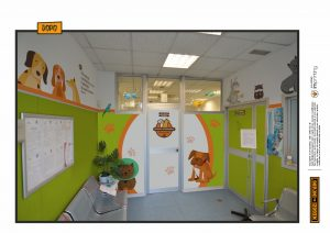 restyling veterinaria pet clinica