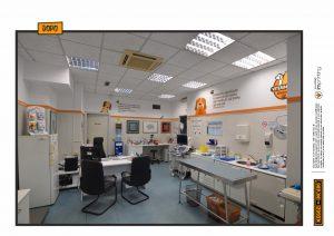 restyling veterinaria pet decori parete